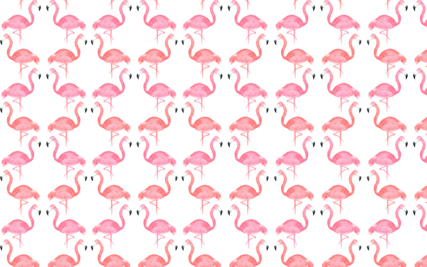 FLAMINGO_DESKTOP WALLPAPERpreview