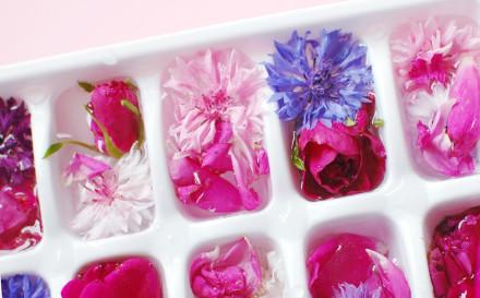 floralicecubes2