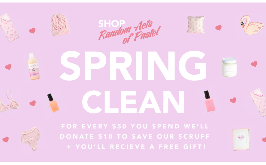 BLOG-shop-Spring-Cleaning-banner-FINAL